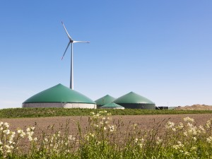 Biogas production buildings and windmill